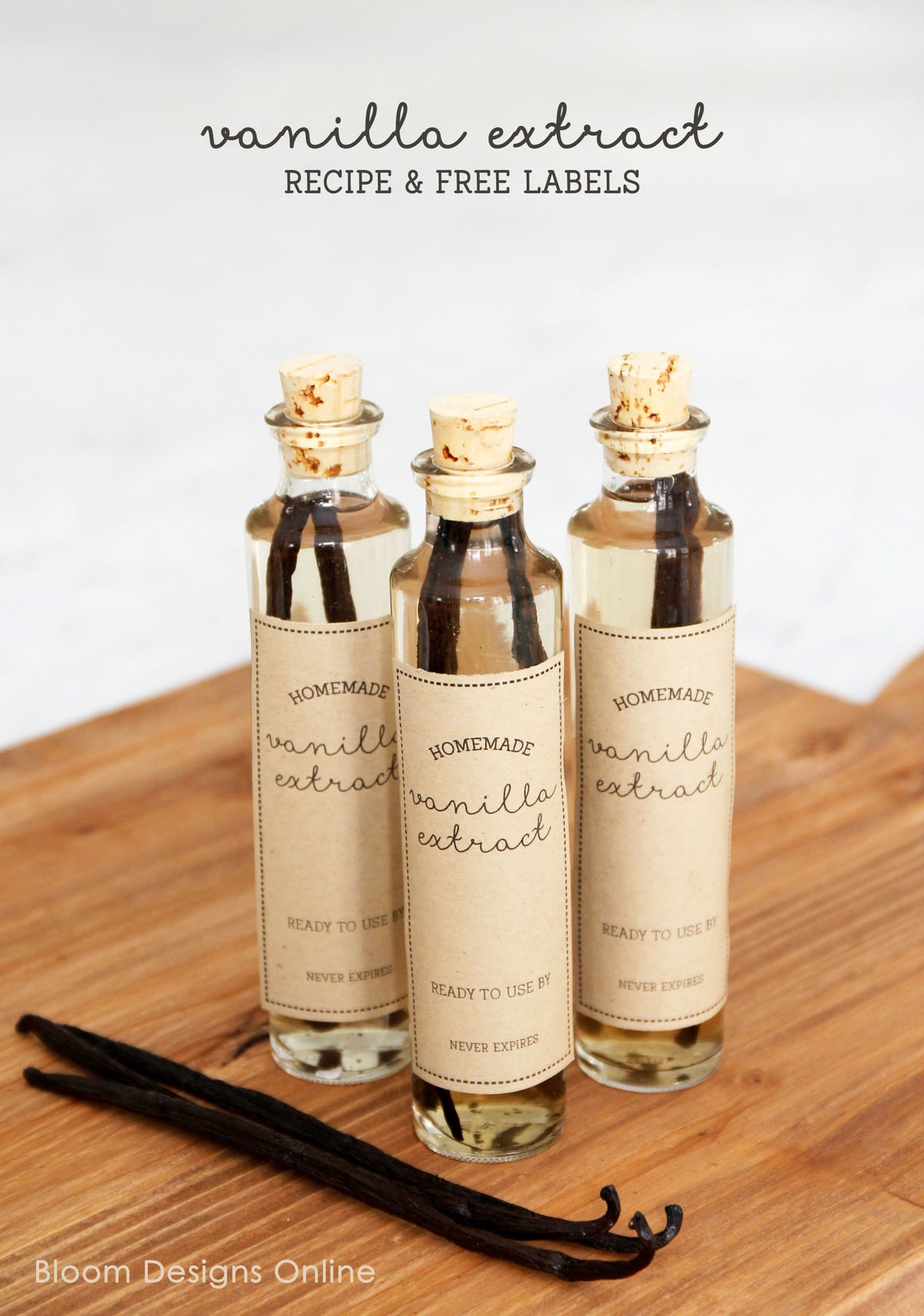 Homemade Vanilla Extract and gift idea. Such a simple and yummy handmade gift idea for anytime (especially the holidays!!) Get the free printable tags for this cute gift!