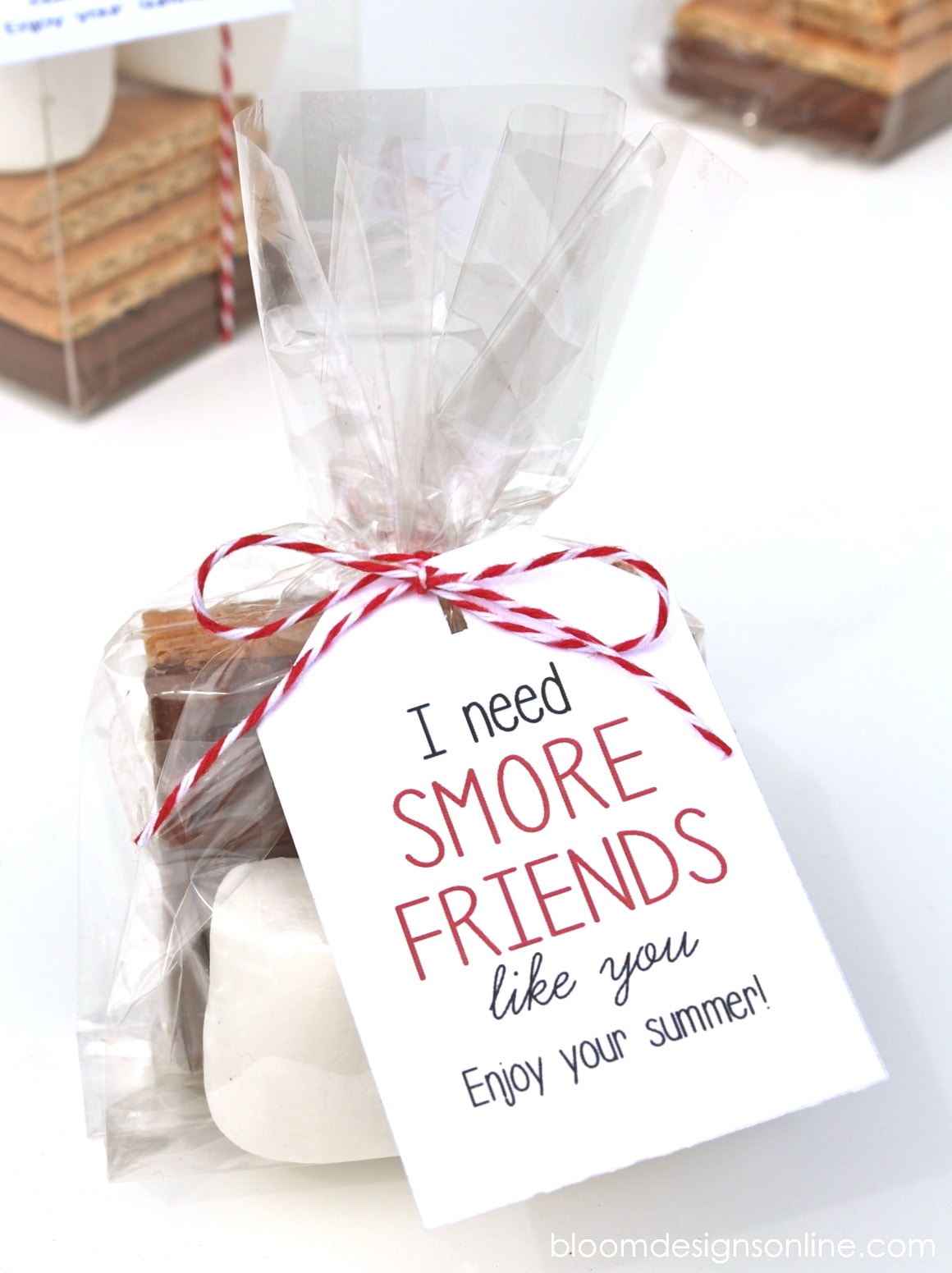 Cute End of the School Year Gift for Friends - I need Smore Friends like you! Free print on { lilluna.com } All your friend needs to make a delicious smore.