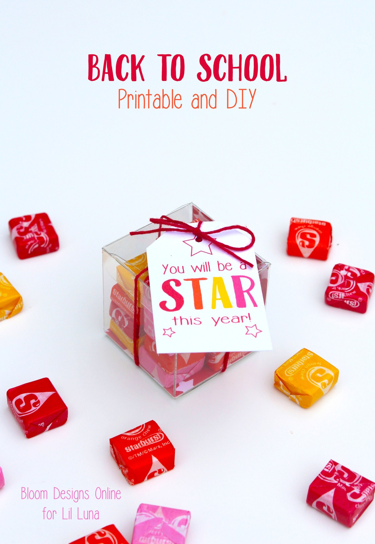 ADORABLE Back to School Gift Idea for the STAR in your family. Free prints on { lilluna.com }
