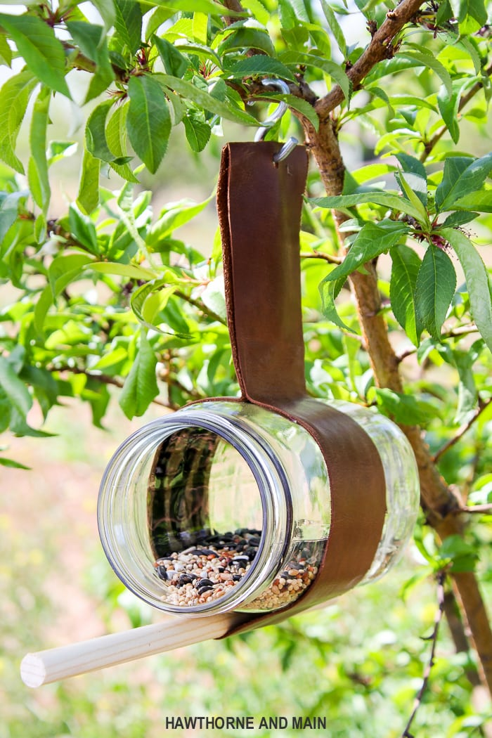 mason-jar-glass-bird-feeder-wtih-leather-strap port-5