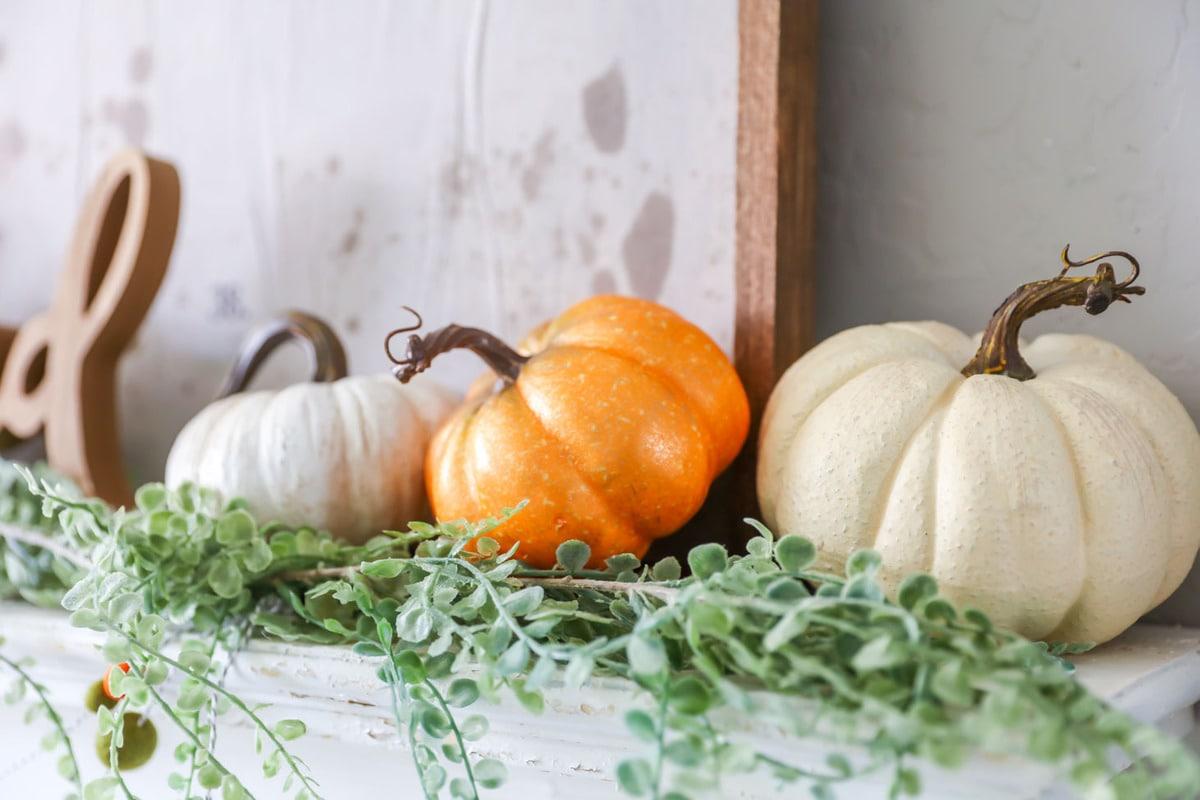 Ashland Pumpkins